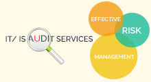 IT / IS Audits